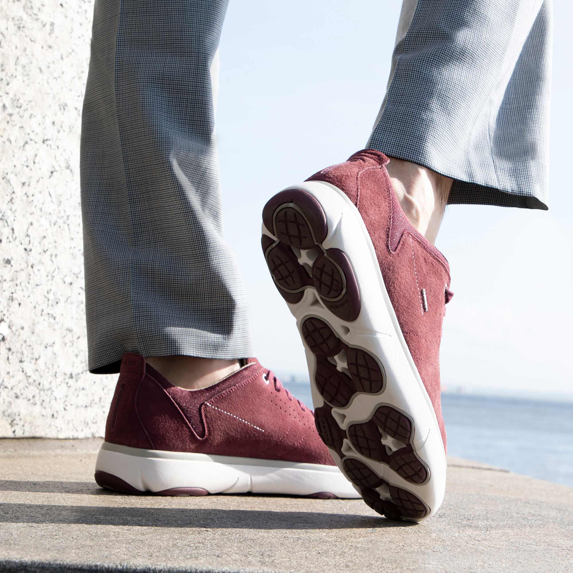 Geox NEBULA Y Man: Dark burgundy Sneakers   Geox Fall Winter