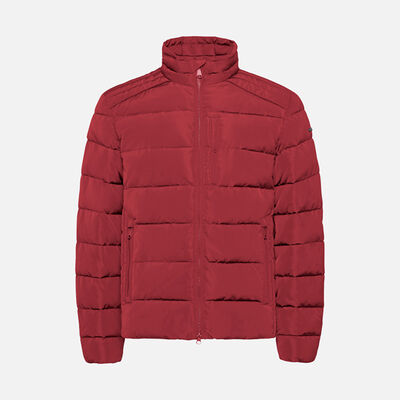 DOWN JACKETS MAN GEOX HILSTONE MAN