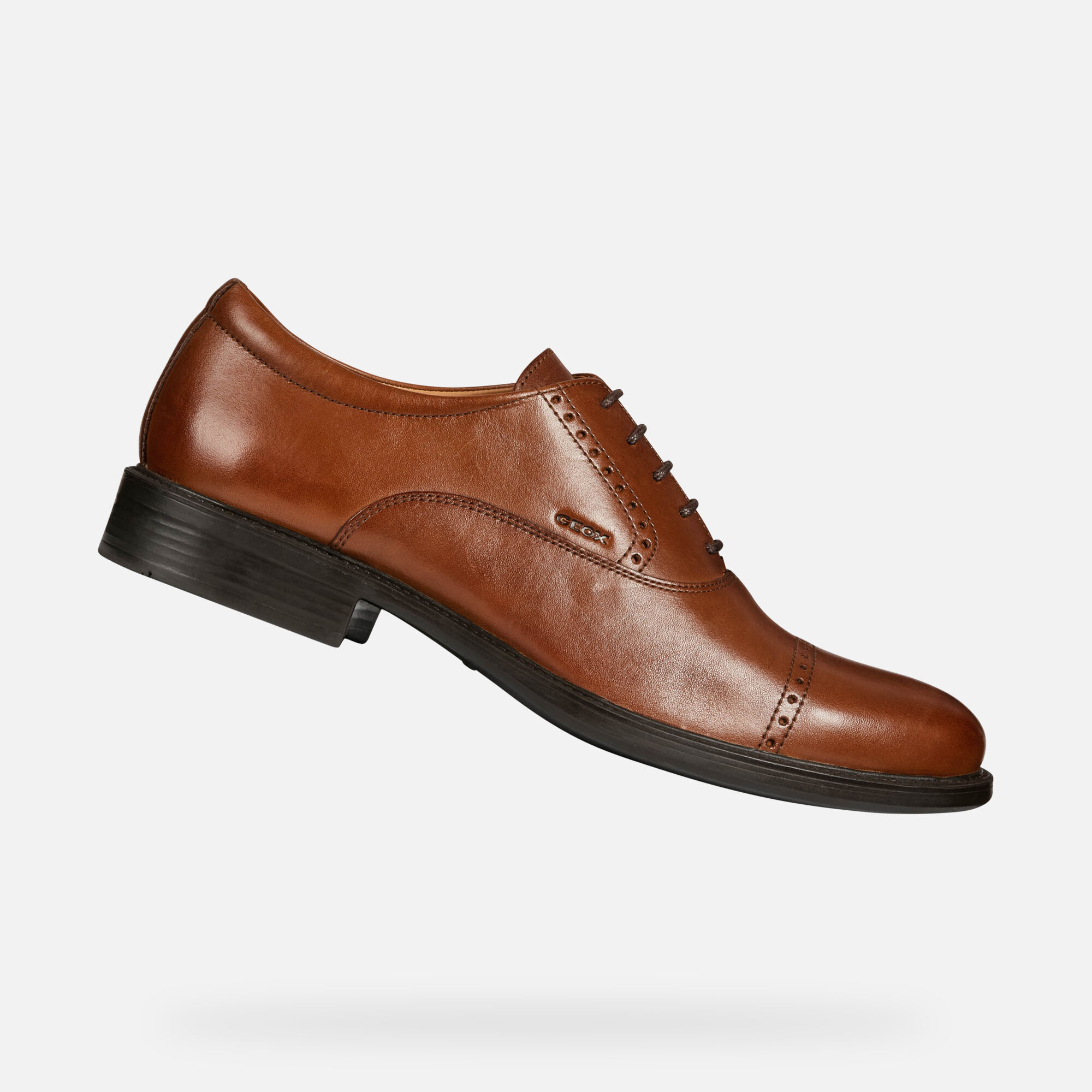 Geox UOMO CARNABY: Brown Man Shoes | Geox SS19