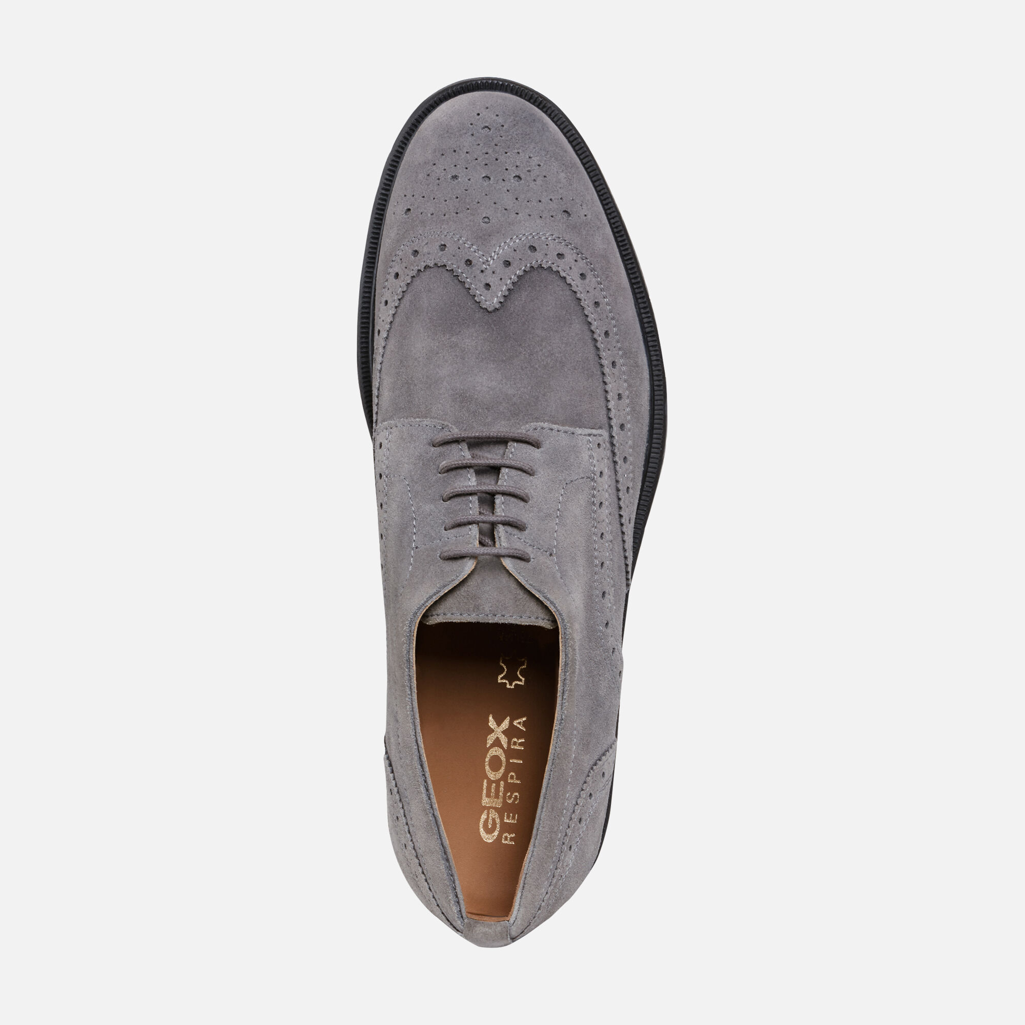 TERENCE CASUAL SHOES from men | Geox