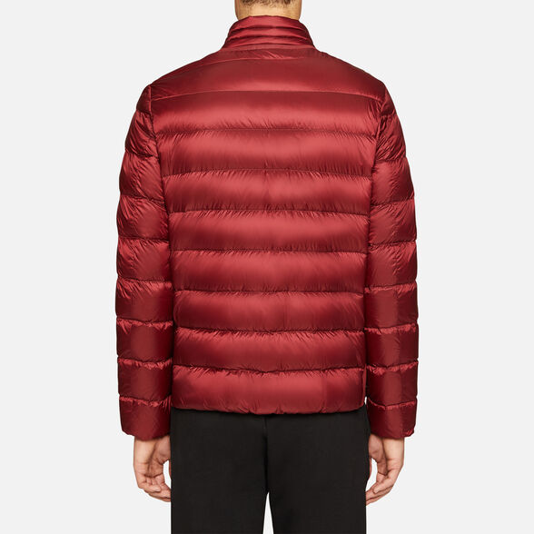 DOWN JACKETS MAN GEOX DERECK MAN - 6