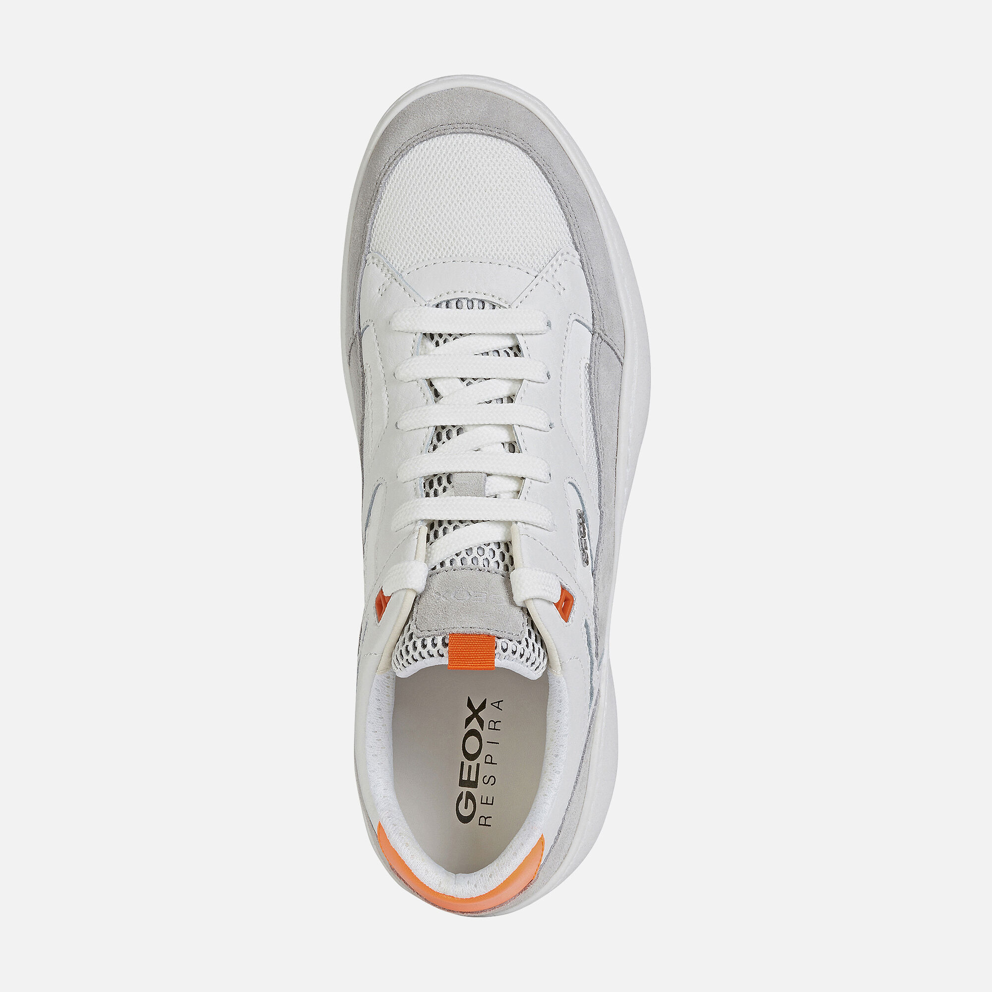 Geox COLBYN Man: Light grey Sneakers