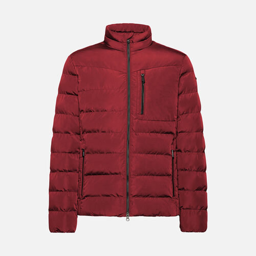 VESTES HOMME GEOX HILSTONE HOMME - null